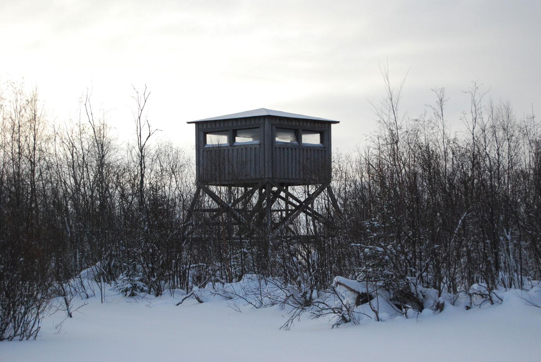 Delta, bird-hide